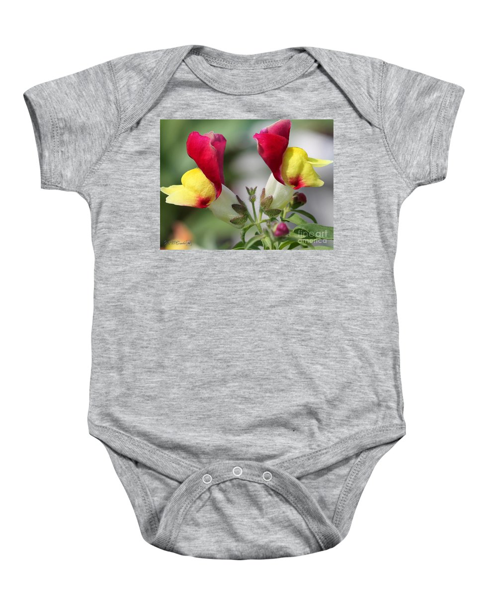 Mccombie Baby Onesie featuring the photograph Snapdragon Named Floral Showers Red And Yellow Bicolour by J McCombie