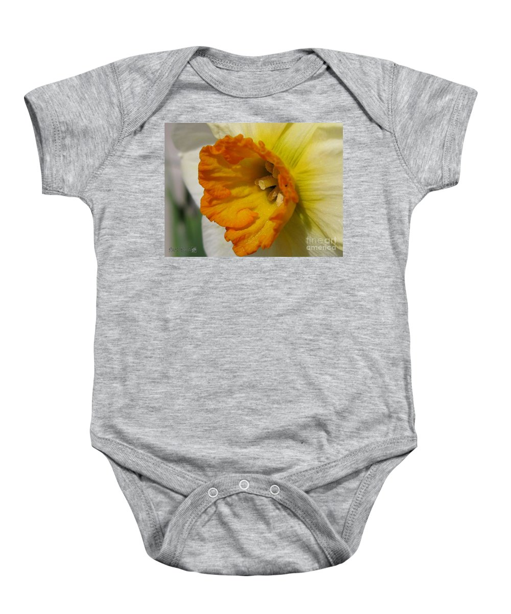 Mccombie Baby Onesie featuring the photograph Small-cupped Daffodil Named Barrett Browning by J McCombie