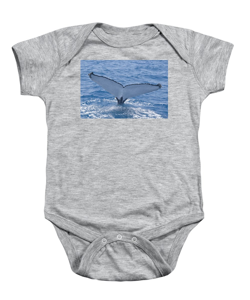 Australia Queensland Qld Baby Onesie featuring the digital art Humpback Whales by Carol Ailles