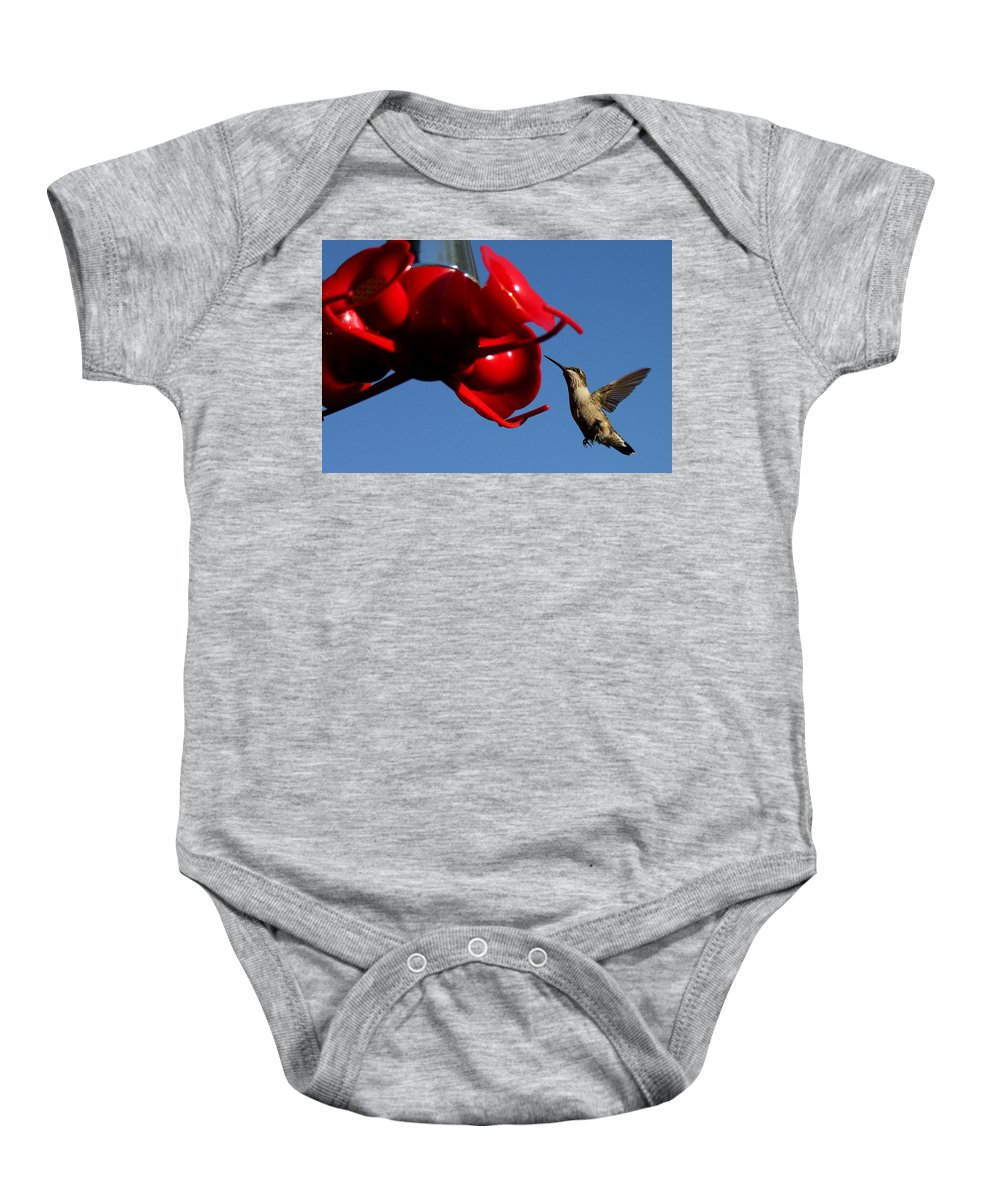 Birds Baby Onesie featuring the photograph A Return Customer by Reid Callaway