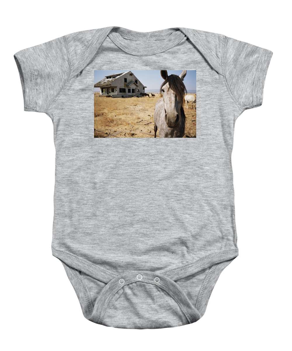 Horse Baby Onesie featuring the photograph Abandoned by Robert Mollett
