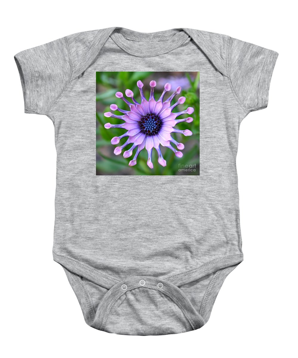 Daisy Baby Onesie featuring the photograph African Daisy - Square Format by Carol Groenen