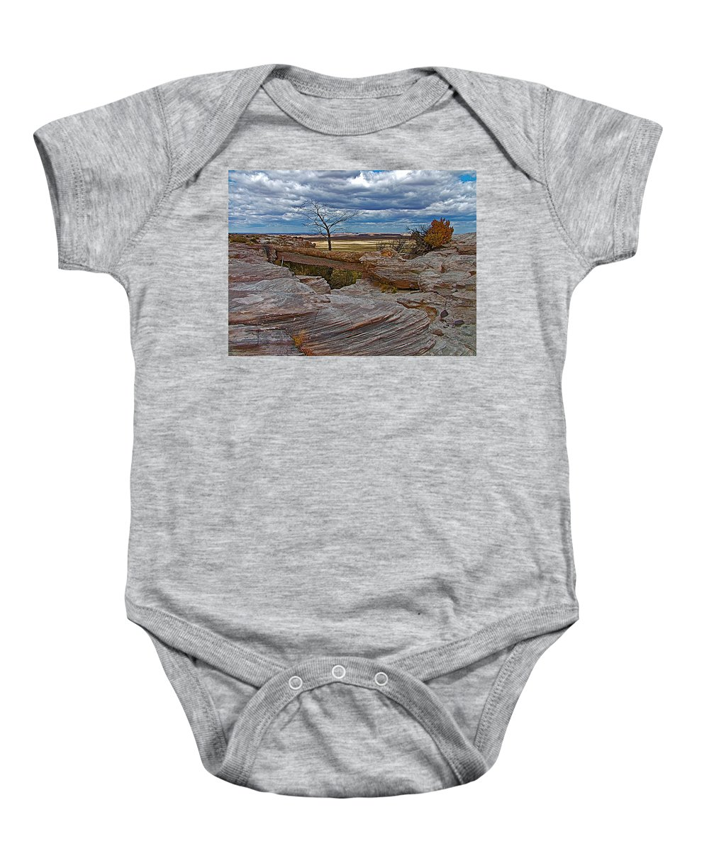 Agate Bridge In Petrified Forest National Park Baby Onesie featuring the photograph Agate Bridge In Petrified Forest National Park-arizona by Ruth Hager