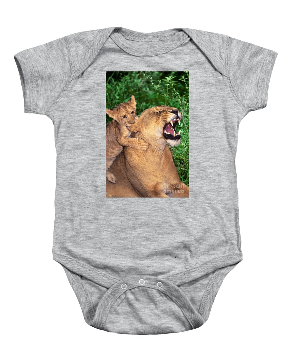 African Lions Baby Onesie featuring the photograph Ah Being A Mother Is Wonderful African Lions Wildlife Rescue by Dave Welling