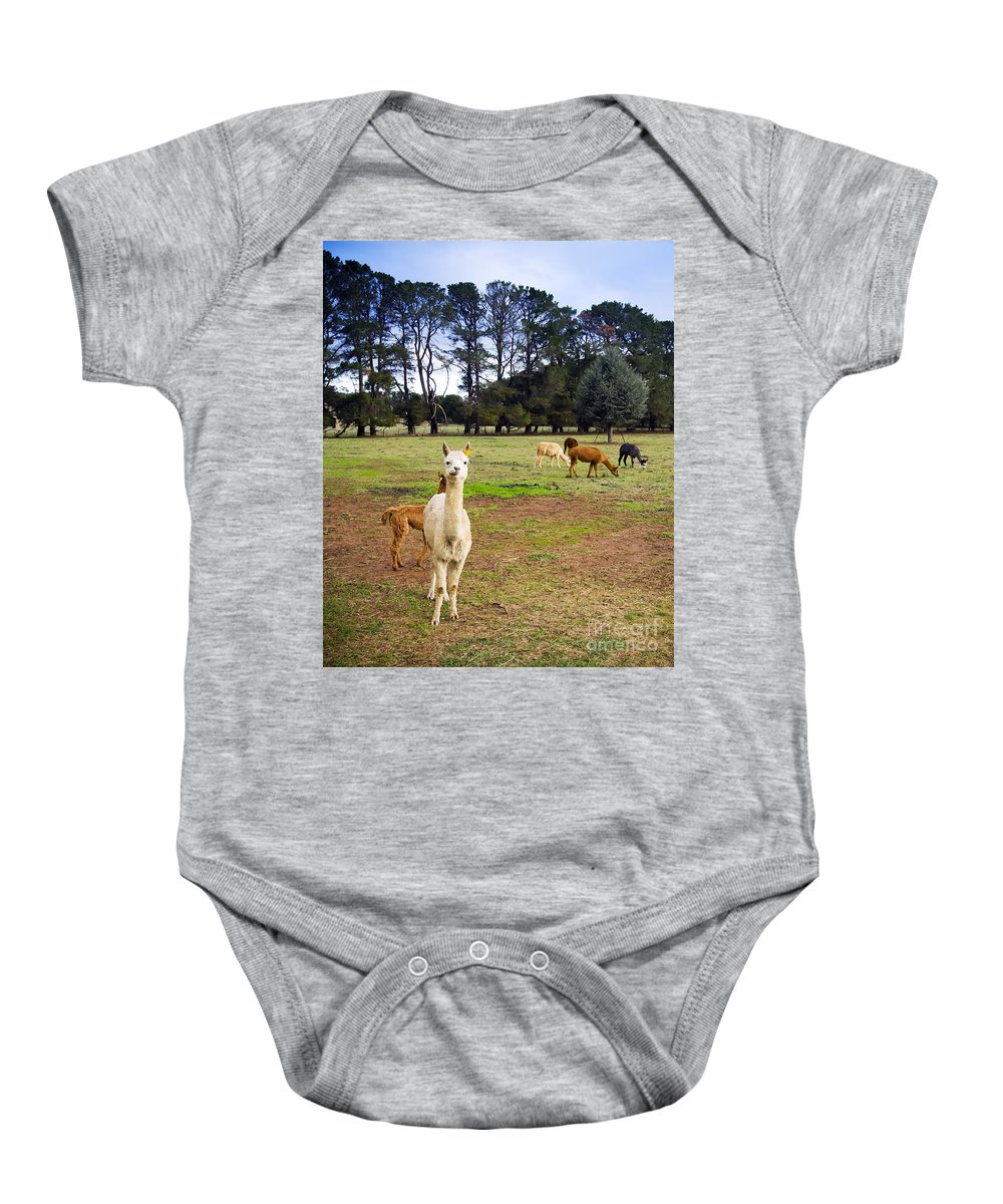 Alpaca Baby Onesie featuring the photograph Alpaca by Tim Hester