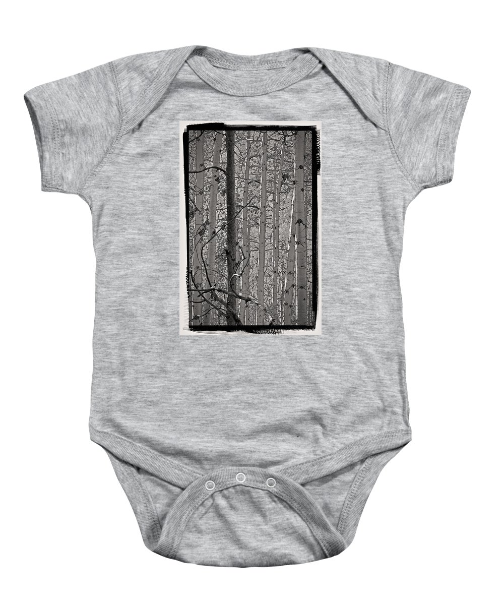 Grove Baby Onesie featuring the photograph Aspens In Platinum by Charles Muhle