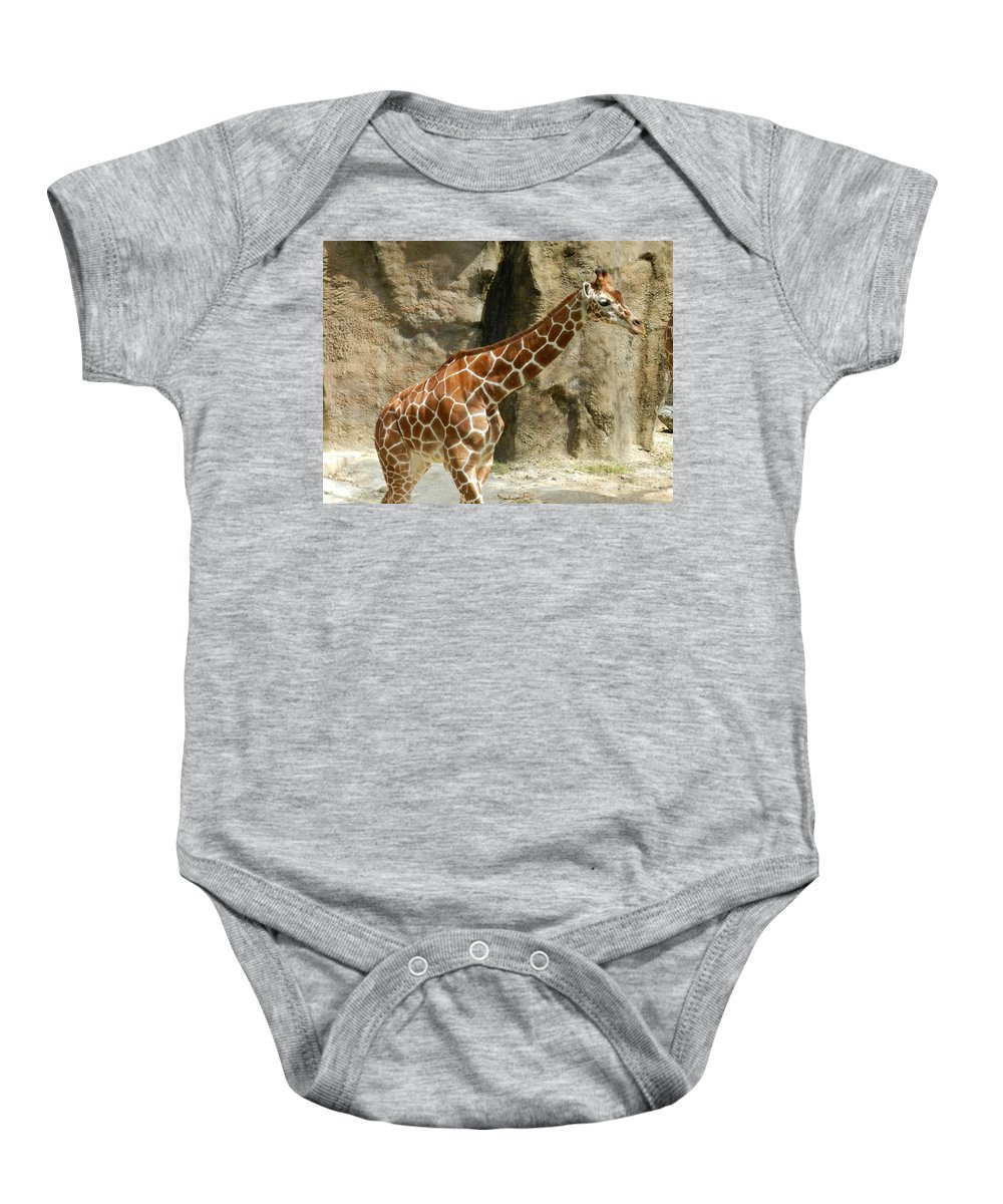 Baby Baby Onesie featuring the photograph Baby Giraffe 4 by Heather Jane