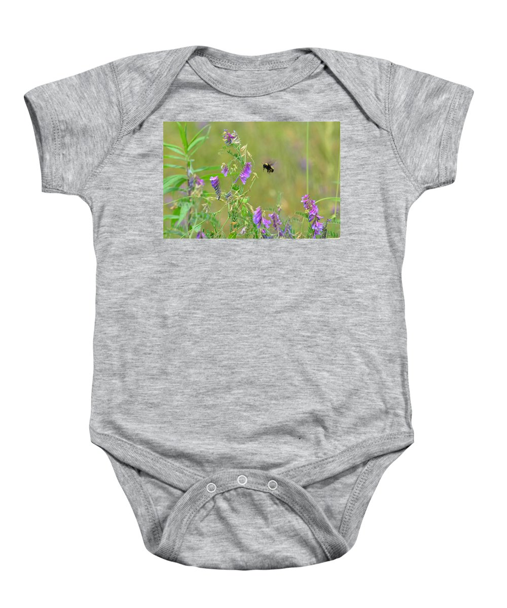 Baby Hummingbird Moth In Flight Baby Onesie featuring the photograph Baby Hummingbird Moth In Flight by Maria Urso