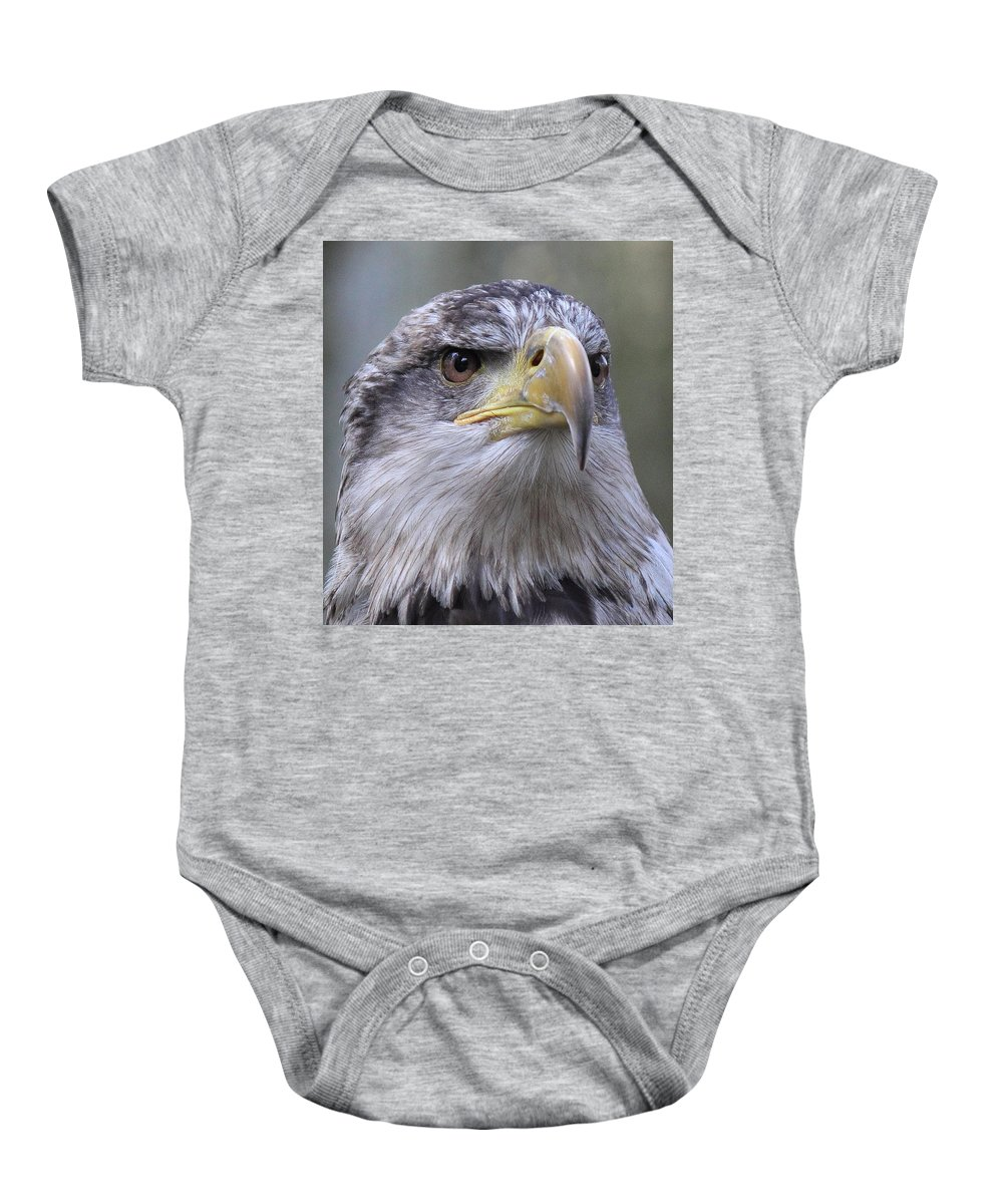 Bald Eagle Baby Onesie featuring the photograph Bald Eagle - Juvenile by Randy Hall