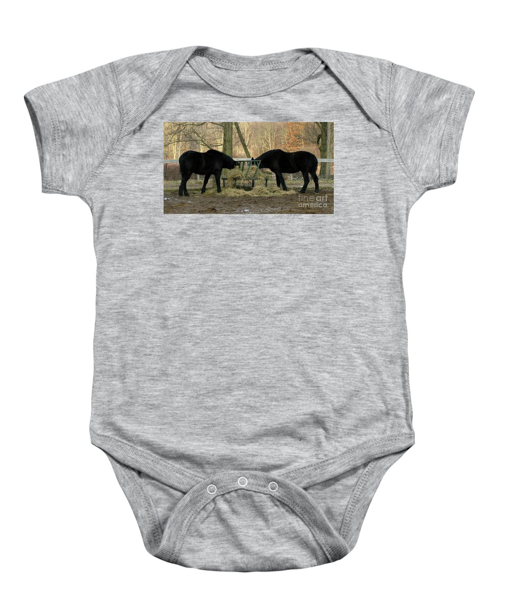 Horse Baby Onesie featuring the photograph Barnyard Beauties by Ann Horn