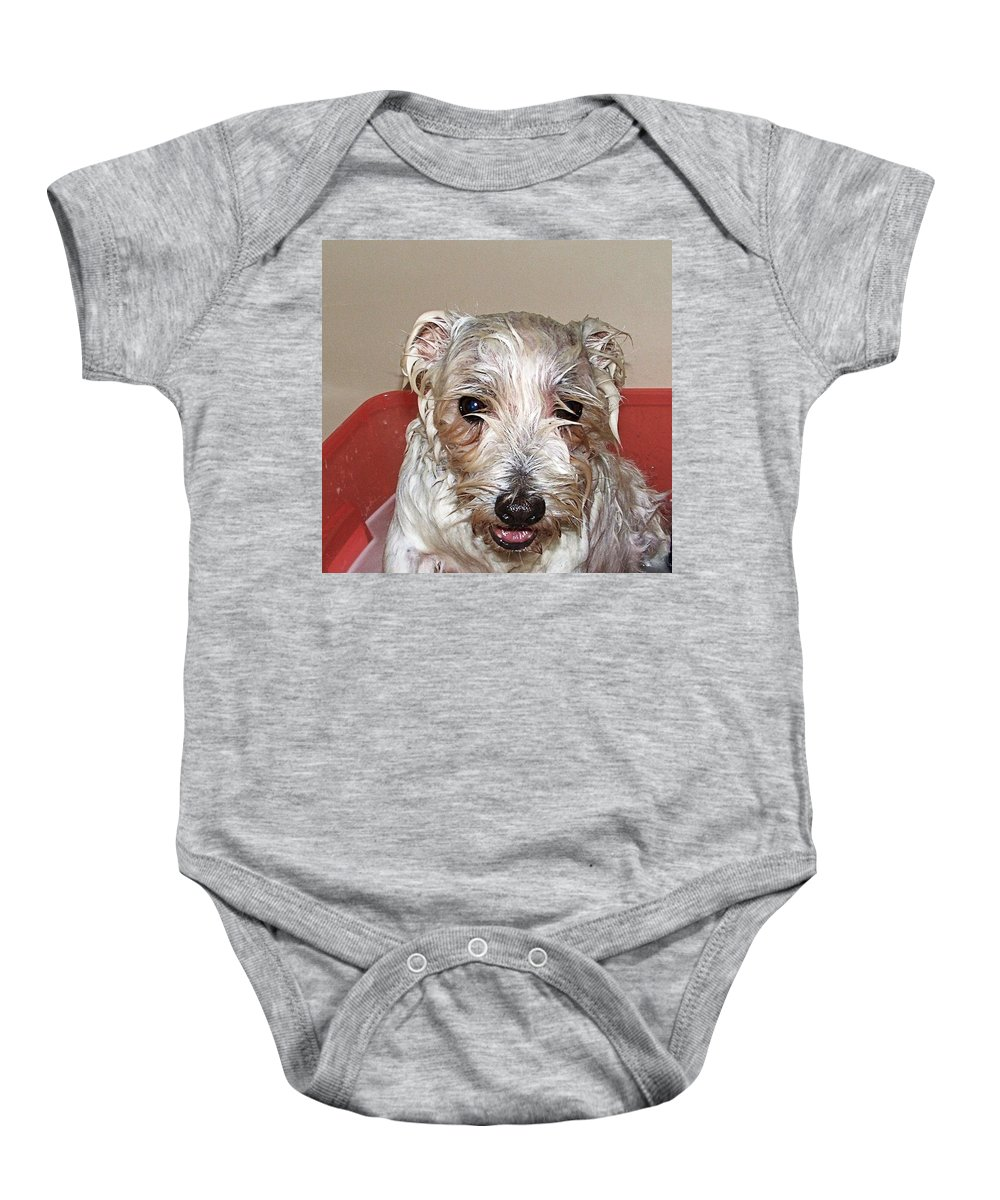 Dog Baby Onesie featuring the photograph Bath Time by Image Takers Photography LLC - Carol Haddon