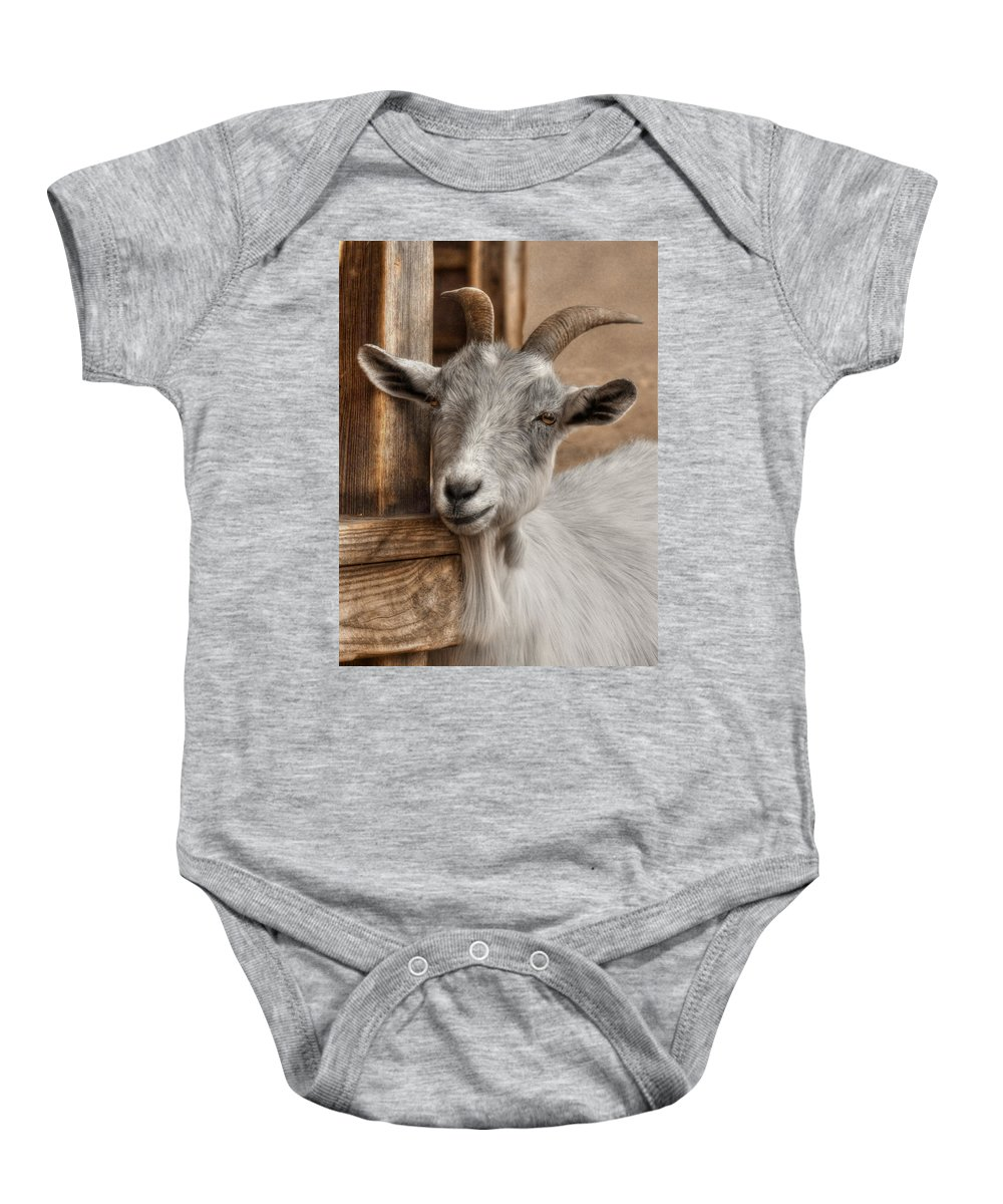 Billy Goat Baby Onesie featuring the photograph Billy Goat by Lori Deiter
