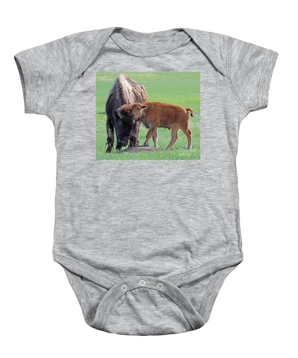 Bison Baby Onesie featuring the photograph Bison With Young Calf by Bill Gabbert
