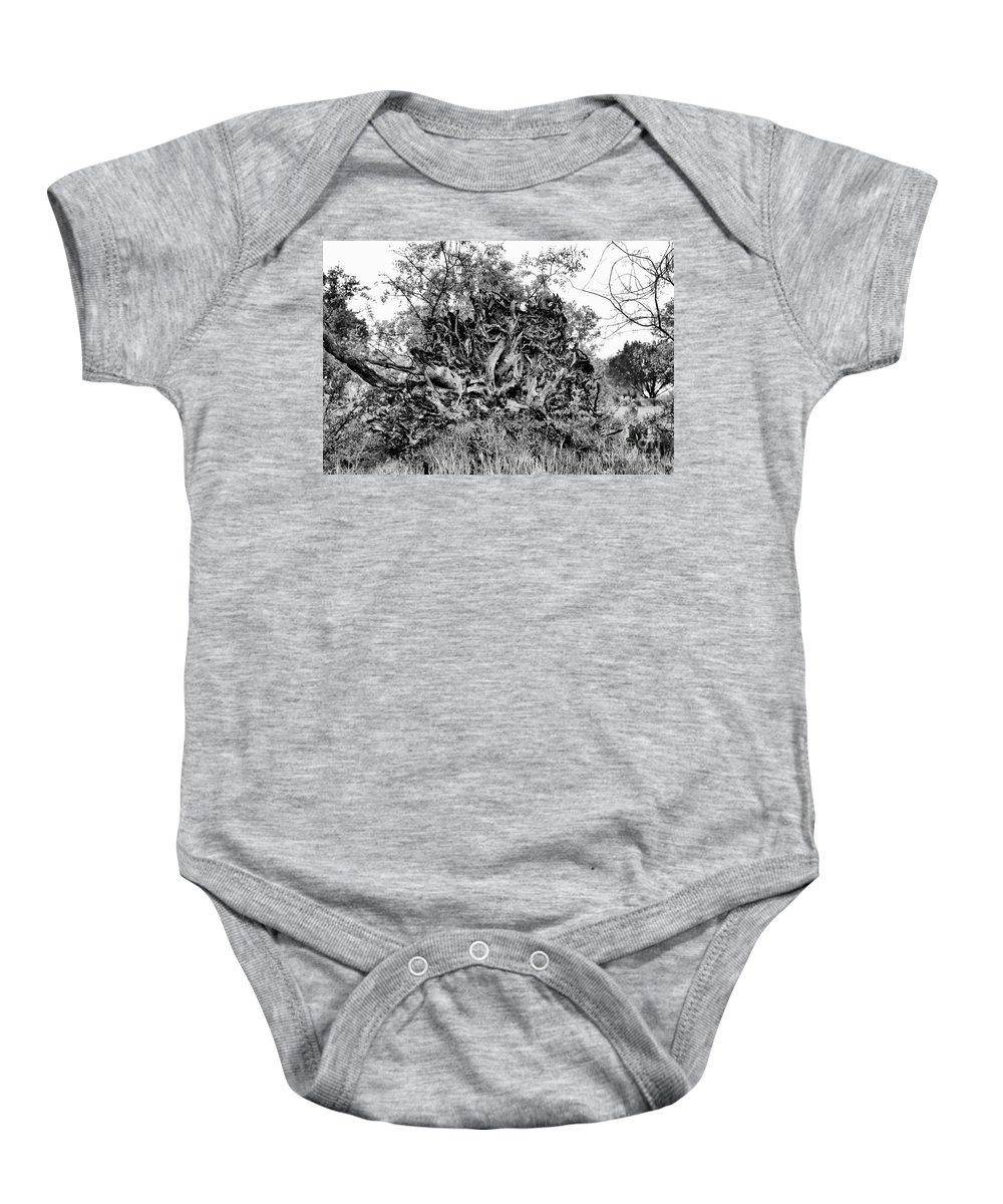 Wildflowers Baby Onesie featuring the photograph Black And White Uprooted Tree by Douglas Barnard
