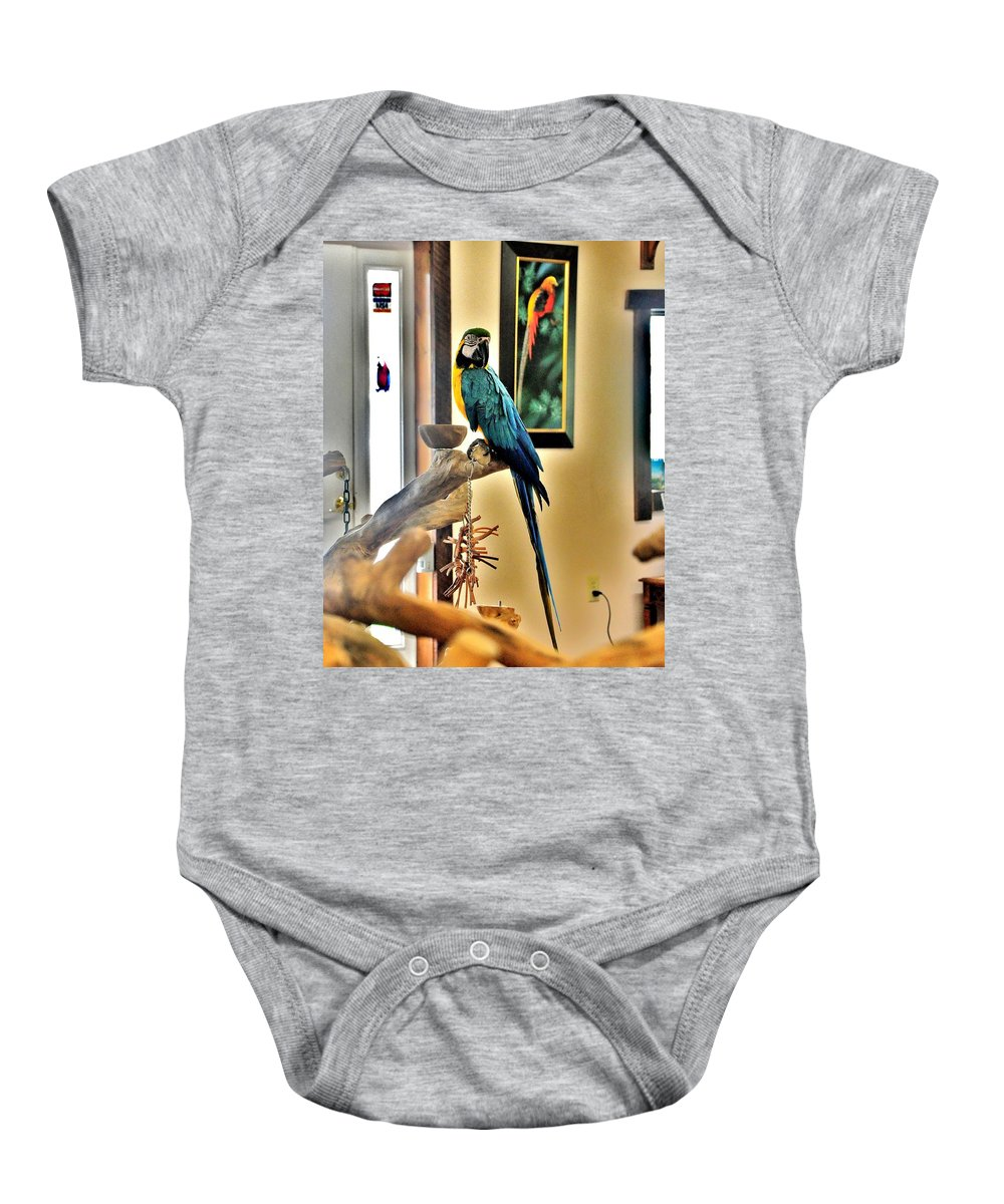 Bird Baby Onesie featuring the photograph On The Perch by Kim Bemis