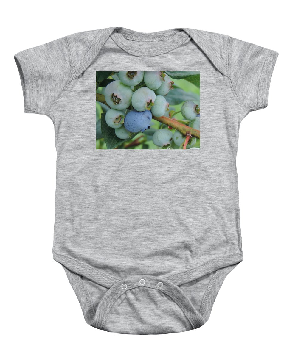 Blueberry Berry Fruit Delicious Sweet Sugar Fresh Organic Produce Grow Growth Growing Plump Blue Tasty Yummy Plant Food Edible Healthy Baby Onesie featuring the photograph Blueberries by Cityscape Photography