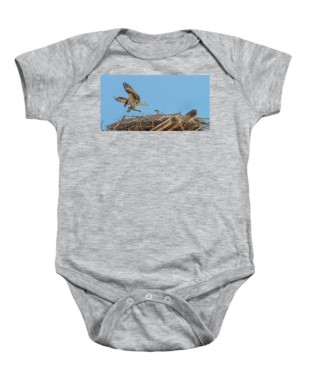 Trout Baby Onesie featuring the photograph Breakfest Time by Brian Williamson