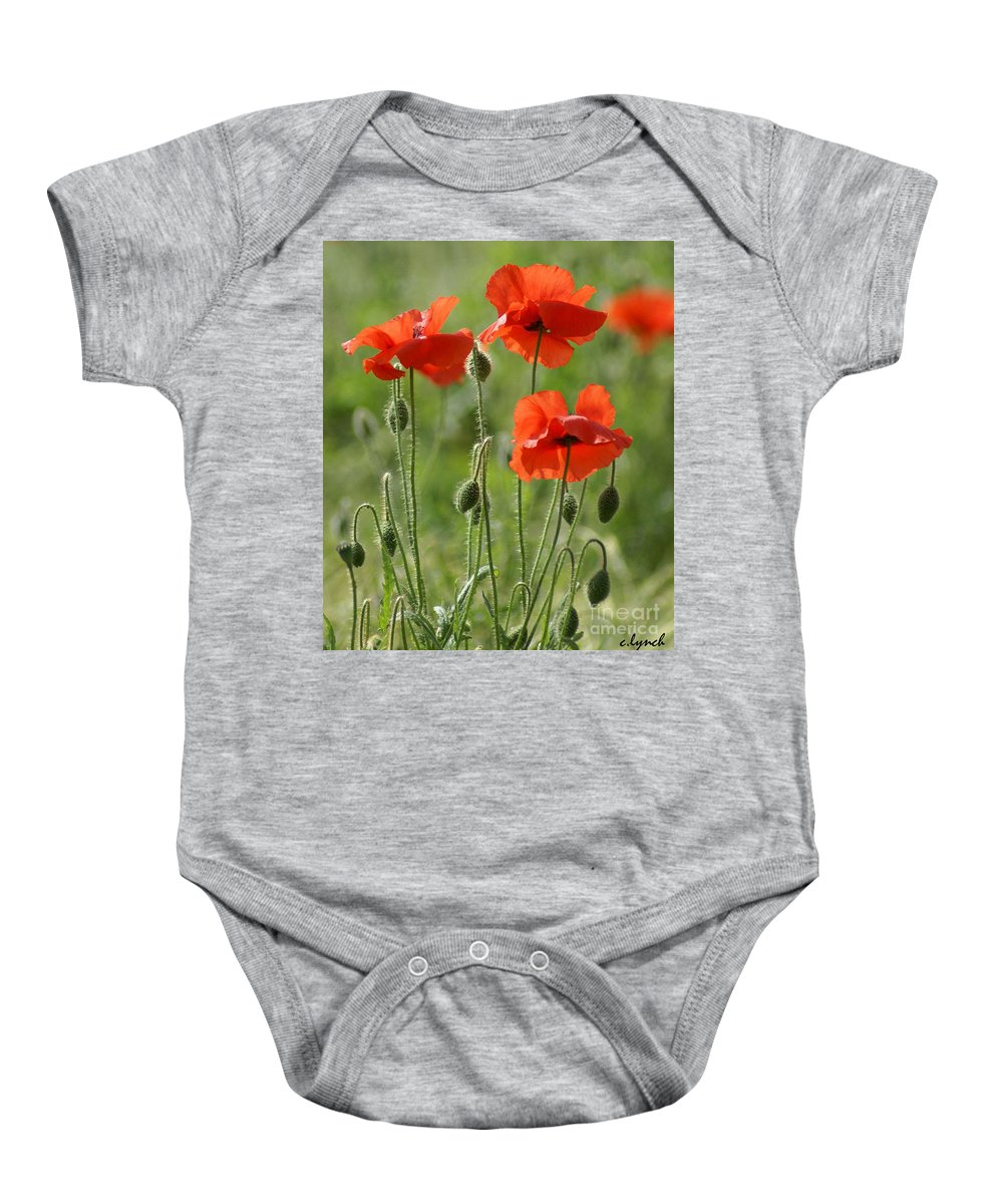 Poppies Baby Onesie featuring the photograph Bright Poppies 1 by Carol Lynch