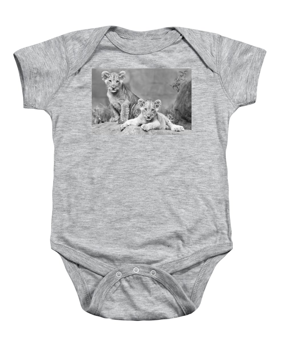 Wildlife Baby Onesie featuring the photograph Brothers by Linda D Lester