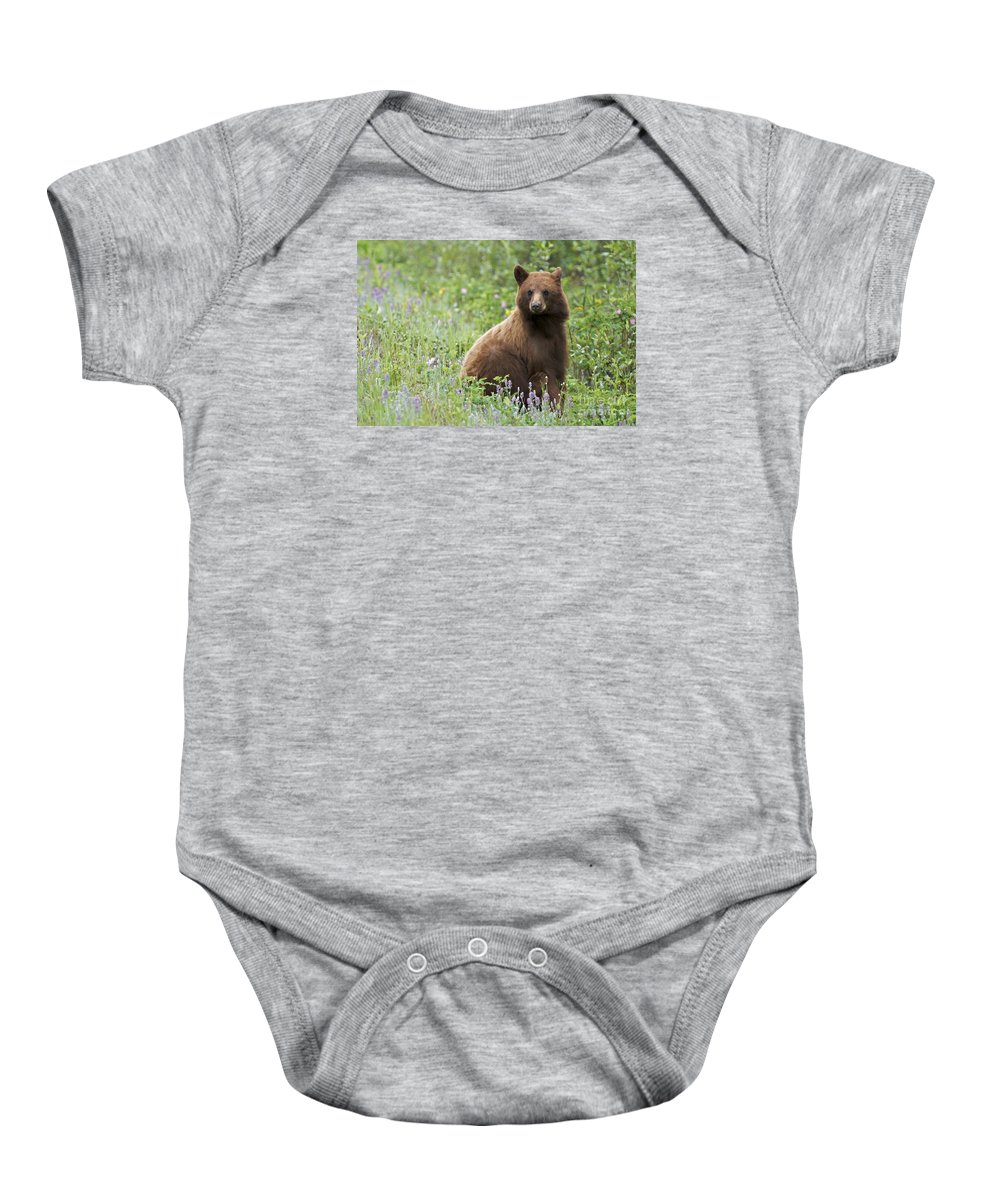 Bear Baby Onesie featuring the photograph Canadian Bear by Armelle Troussard