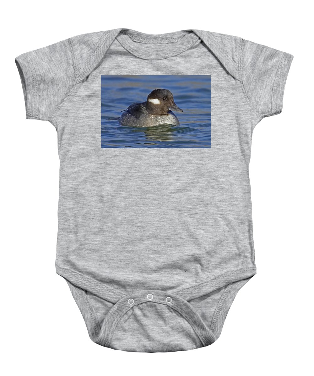 Duck Baby Onesie featuring the photograph Bufflehead by Jack Milchanowski
