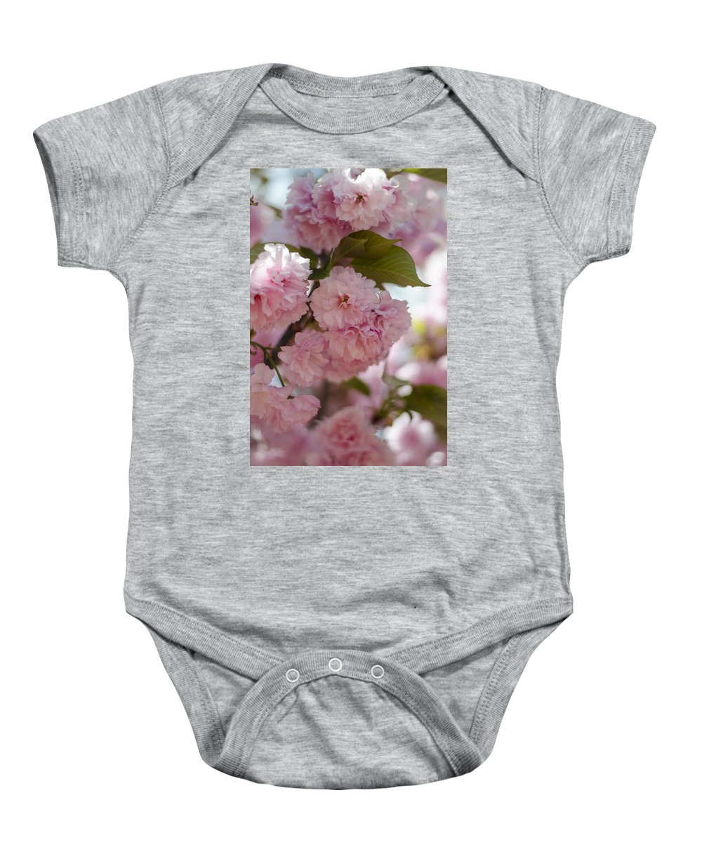 Cherry Blossoms Baby Onesie featuring the photograph Bursting With Blooms by Heather Applegate