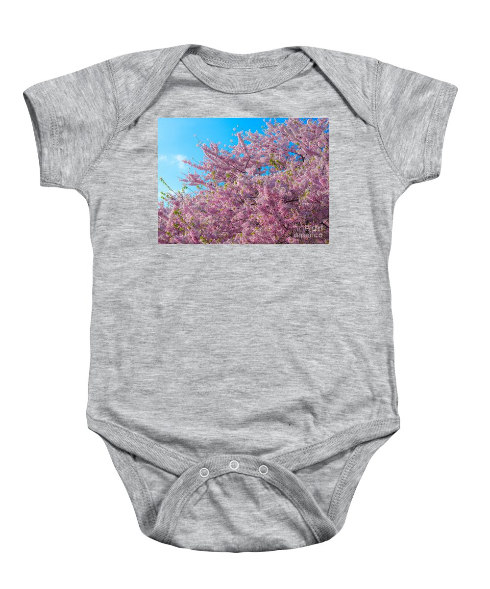 2012 Centennial Celebration Baby Onesie featuring the photograph Bursting With Blossoms With A Hint Of Green by Jeff at JSJ Photography