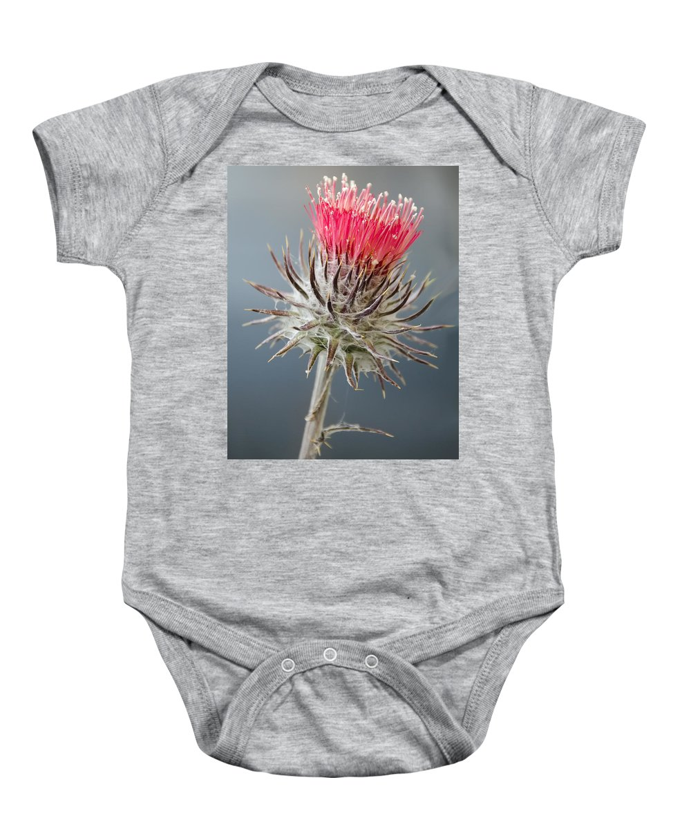 Wildflowers Baby Onesie featuring the photograph California Thistle by Georgette Grossman