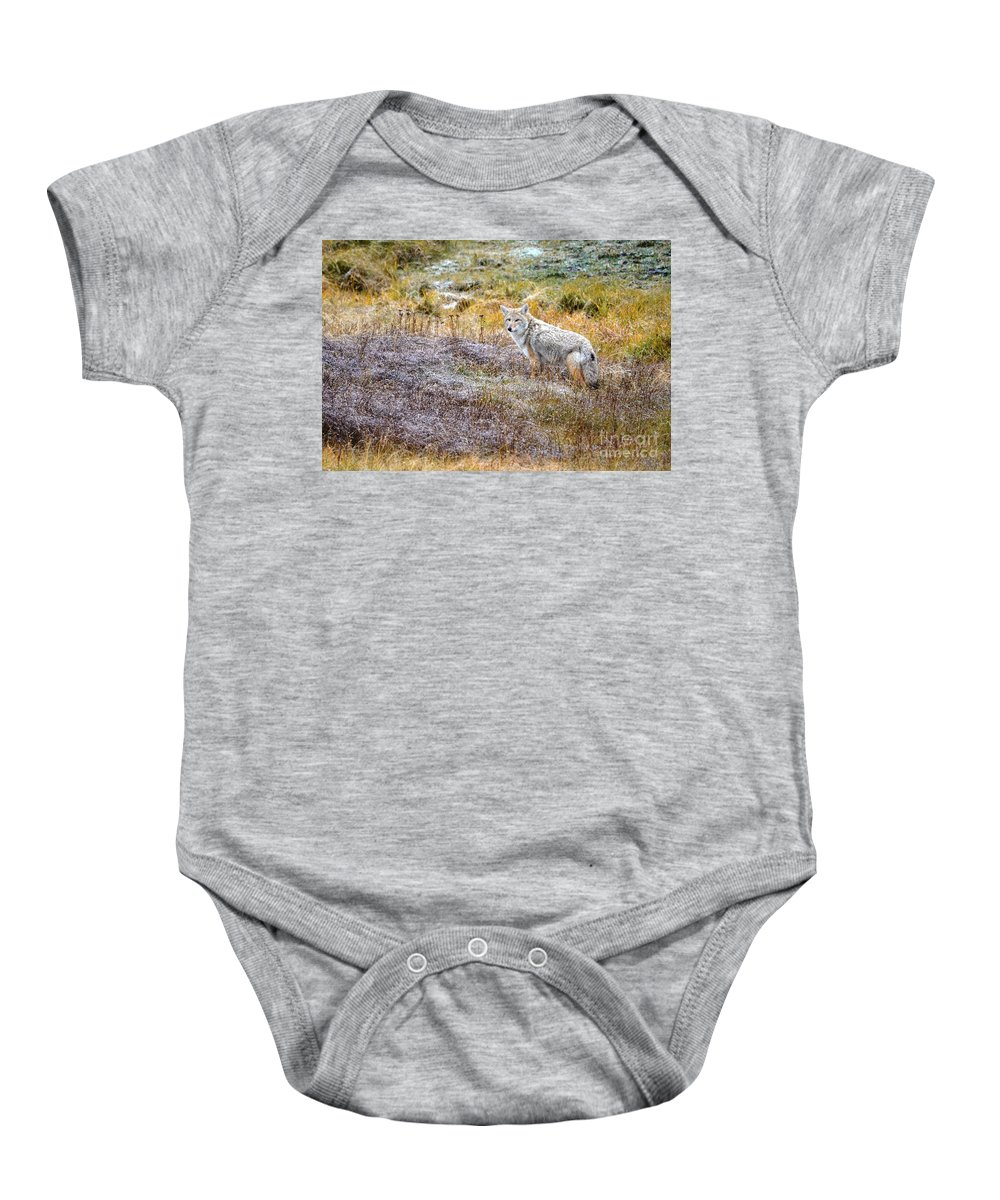 Coyote Baby Onesie featuring the photograph Camo Coyote by Deanna Cagle