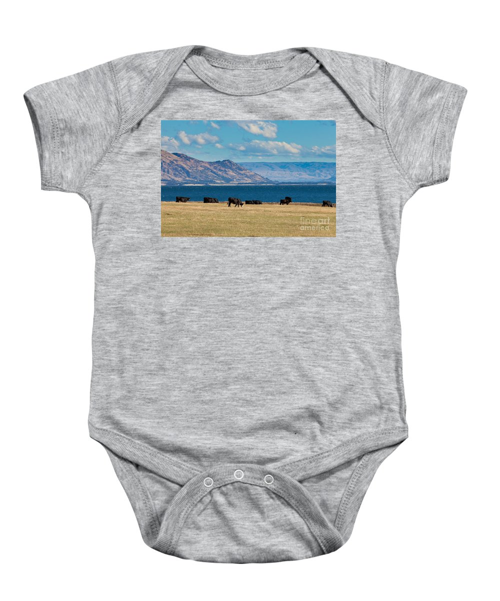 South Island Baby Onesie featuring the photograph Cattle Grazing At Hawea Lake In Southern Alps In New Zealand by Stephan Pietzko