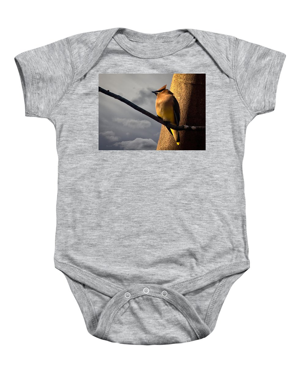 Cedar Waxwing Baby Onesie featuring the photograph Cedar Waxwing by Bob Orsillo