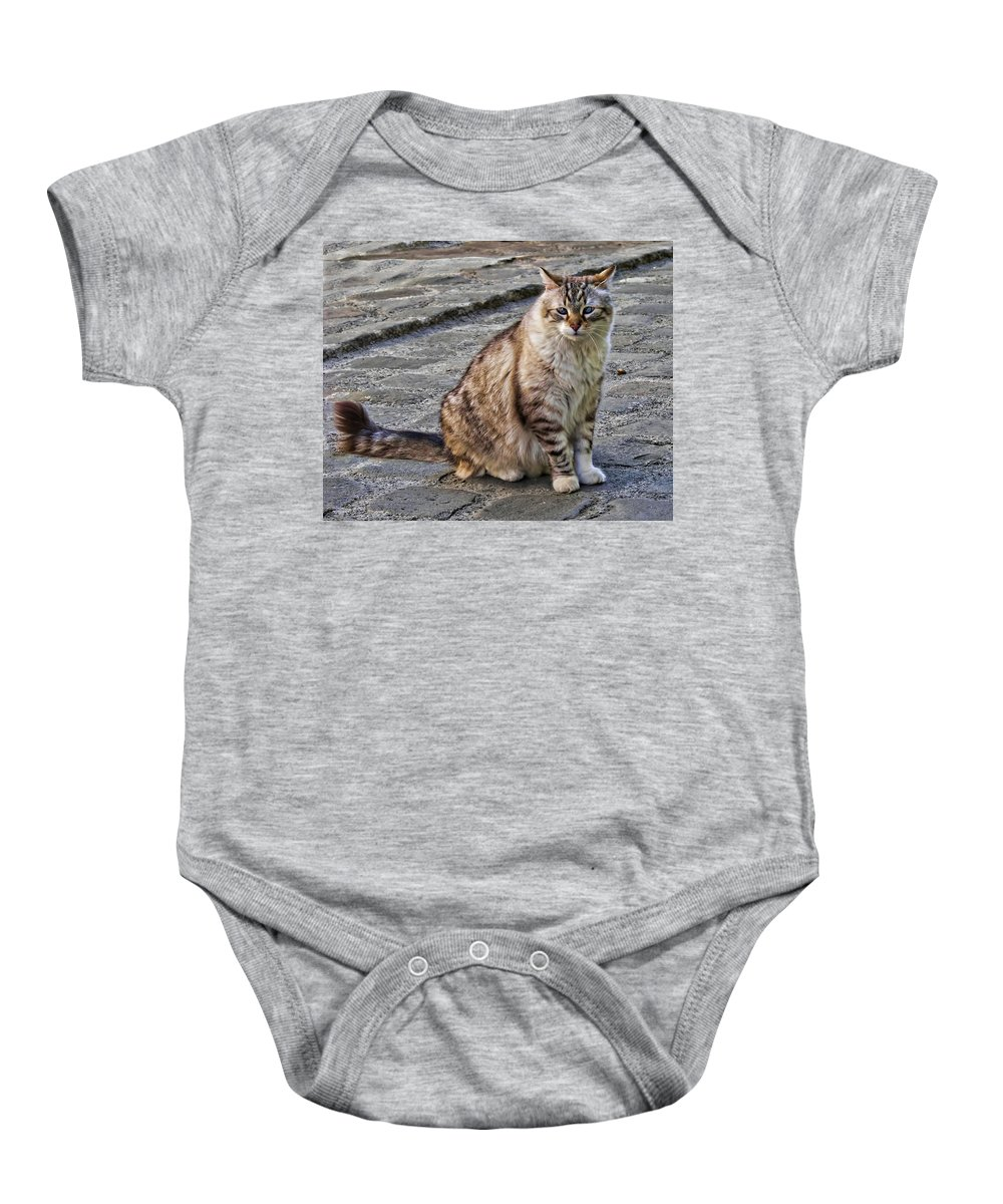 Cat Baby Onesie featuring the photograph Chat by Nikolyn McDonald