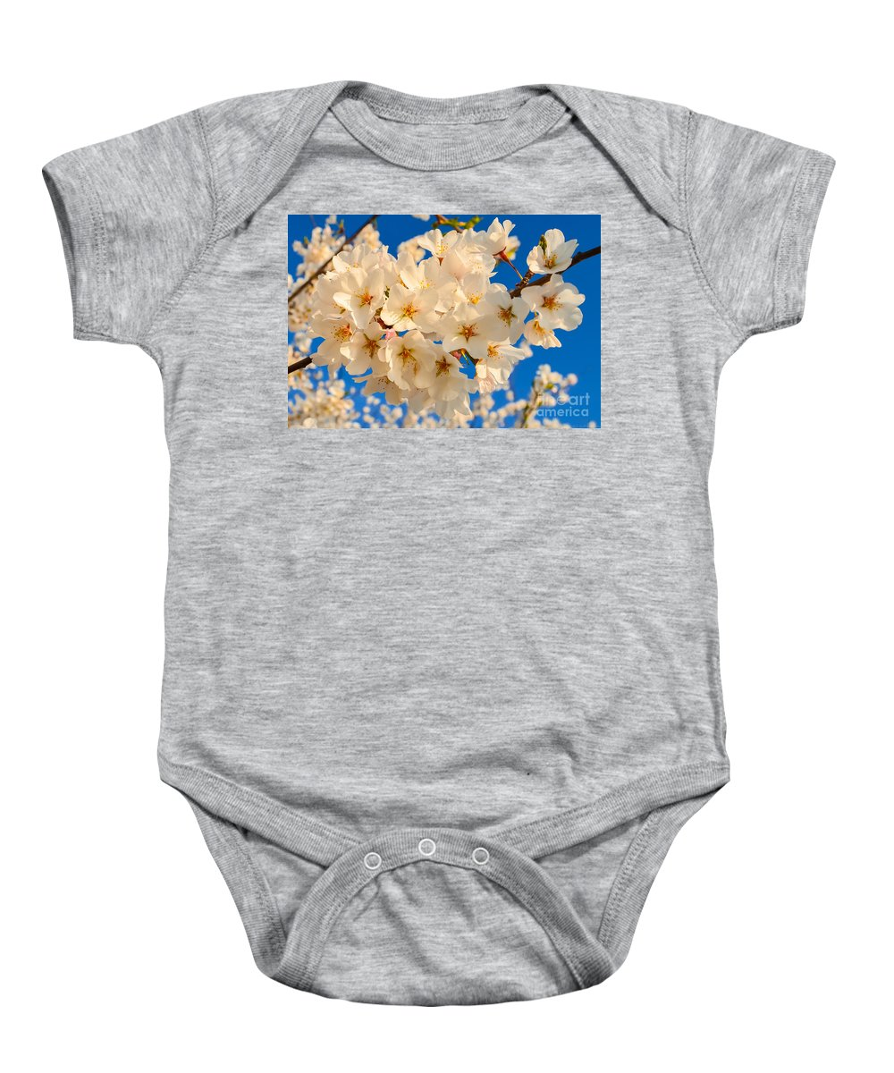 2012 Centennial Celebration Baby Onesie featuring the photograph Cherry Blossom Macro by Jeff at JSJ Photography