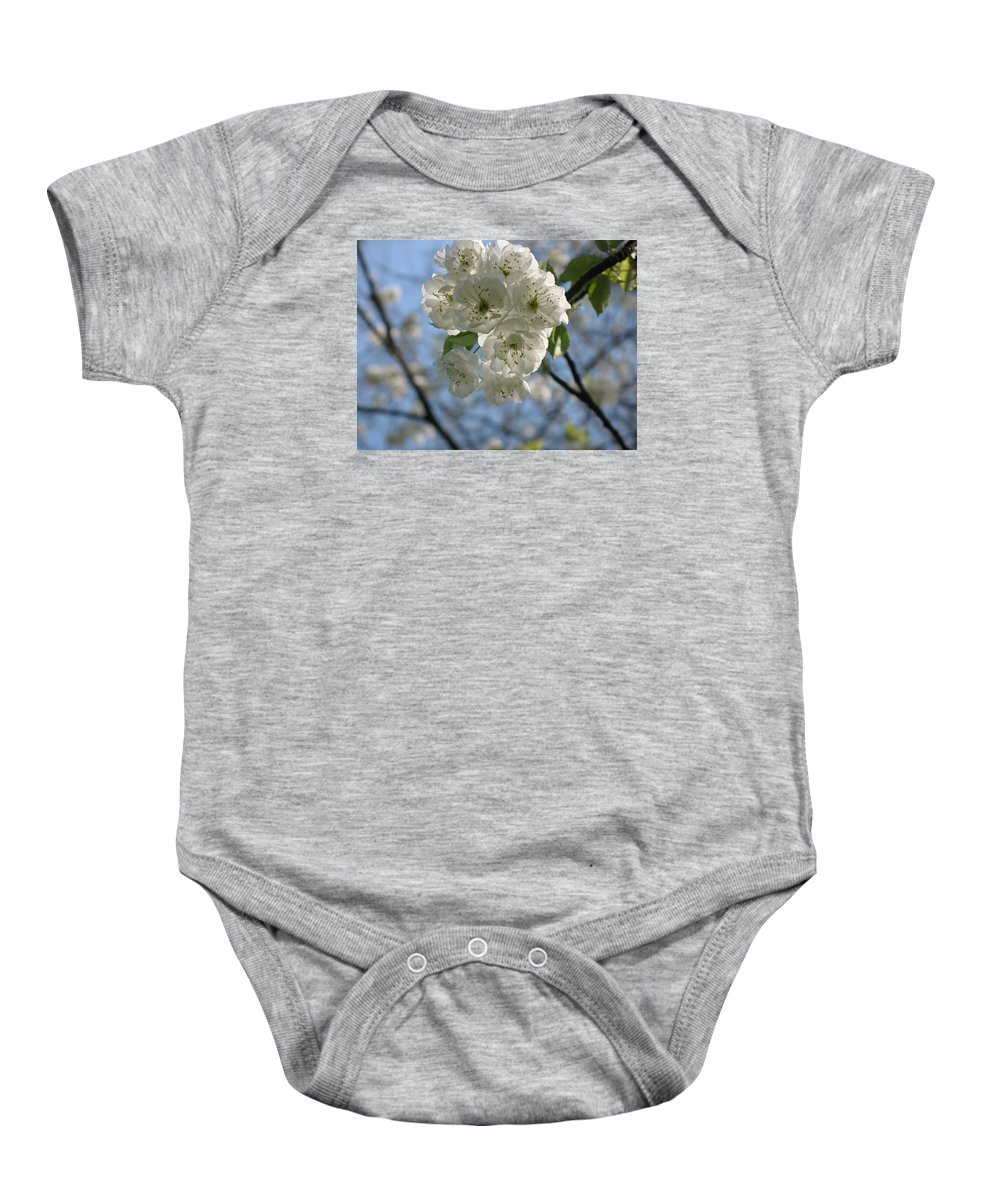 Cherry Baby Onesie featuring the photograph Cherry Tree Petals by Christiane Schulze Art And Photography