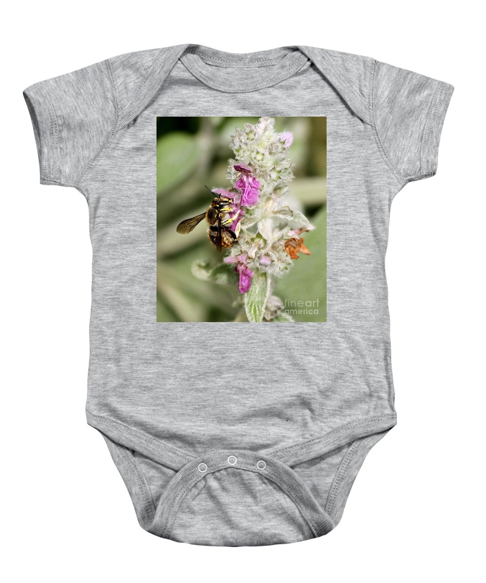 Bee Baby Onesie featuring the photograph Collecting Nectar by Janice Byer