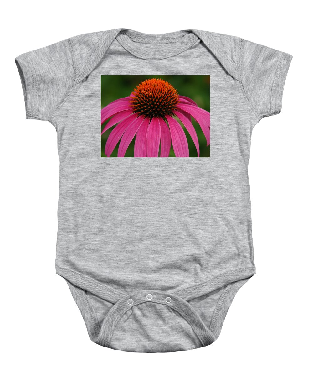Coneflower Baby Onesie featuring the photograph Coneflower Closeup by Lisa Reid