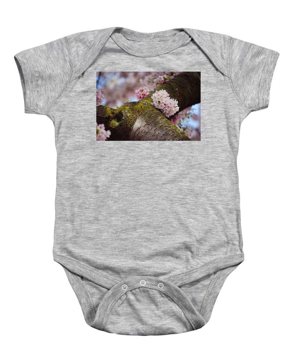 Spring Baby Onesie featuring the photograph Contrast 1. Pink Spring In Amsterdam by Jenny Rainbow