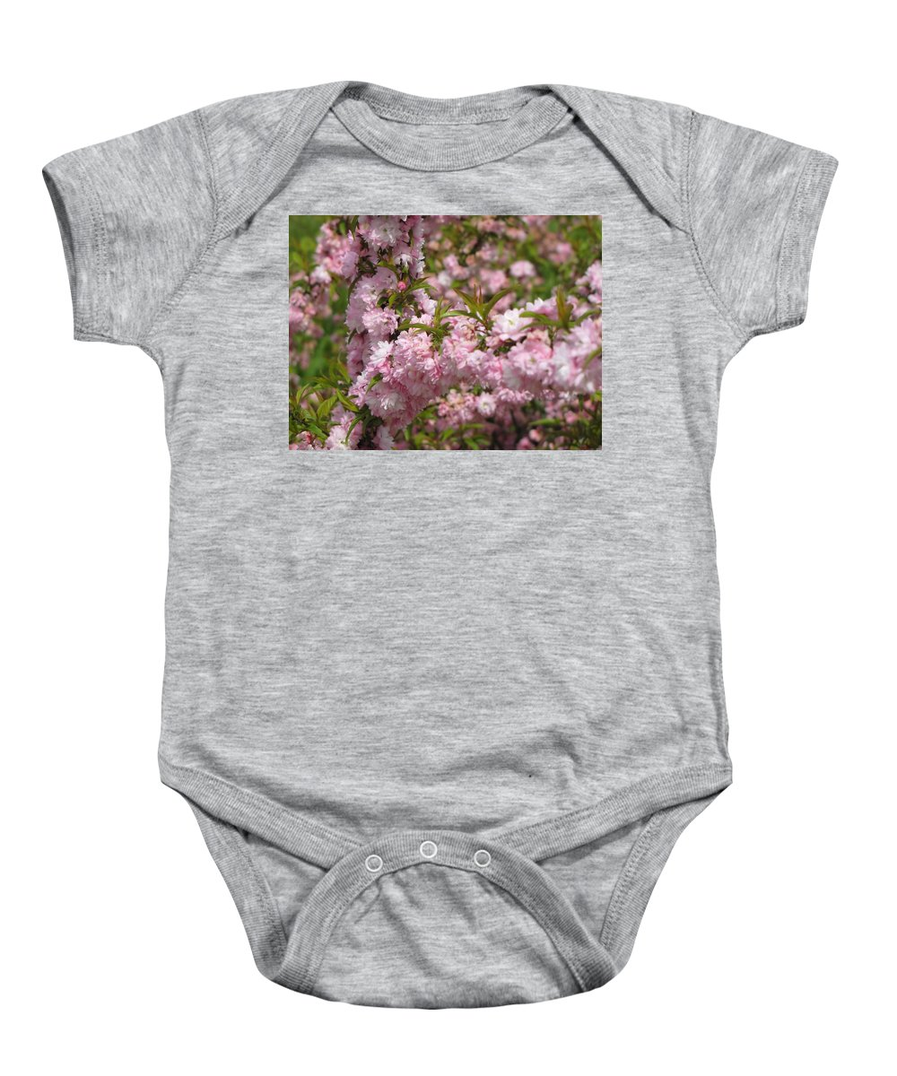 Flowering Almond Baby Onesie featuring the photograph Covered In Pink by MTBobbins Photography