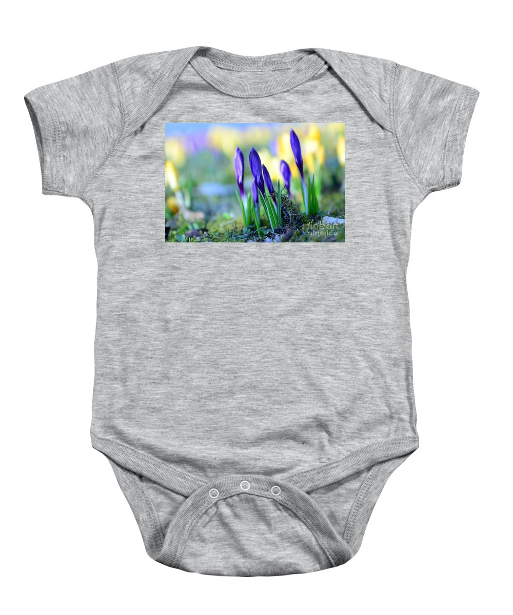 Bokeh Baby Onesie featuring the photograph Crocus by Hannes Cmarits