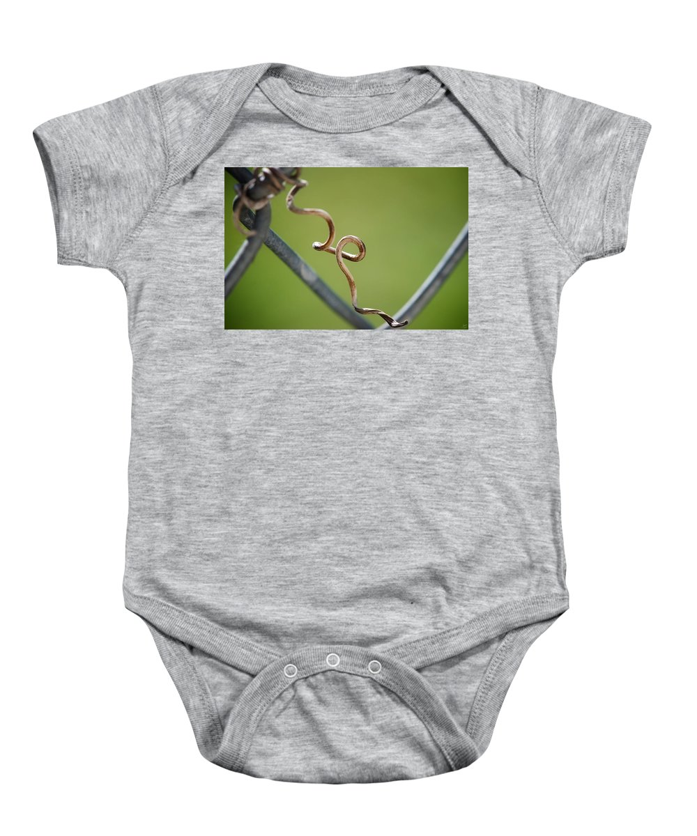 Fence Baby Onesie featuring the photograph Curled by Lisa Knechtel