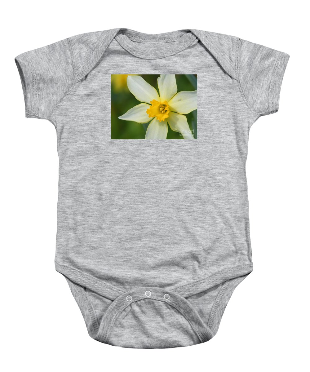 Daffodil Baby Onesie featuring the photograph Daffodil by Cheryl Hardt Art