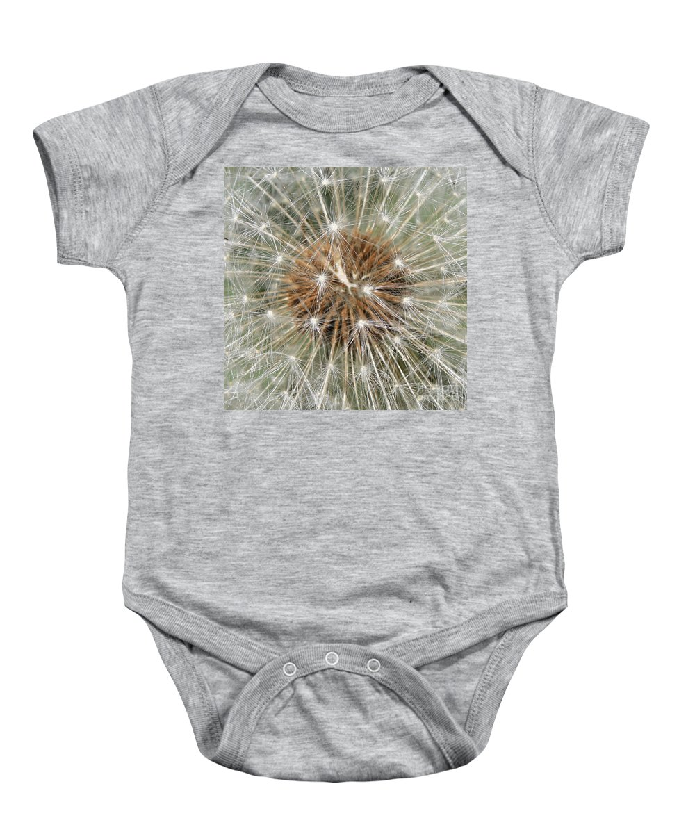 Dandelion Baby Onesie featuring the photograph Dandelion Square by Carol Groenen