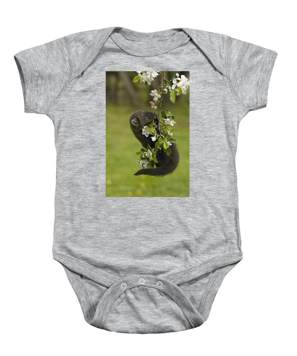 Fisher Baby Onesie featuring the photograph Dangling by Jack Milchanowski