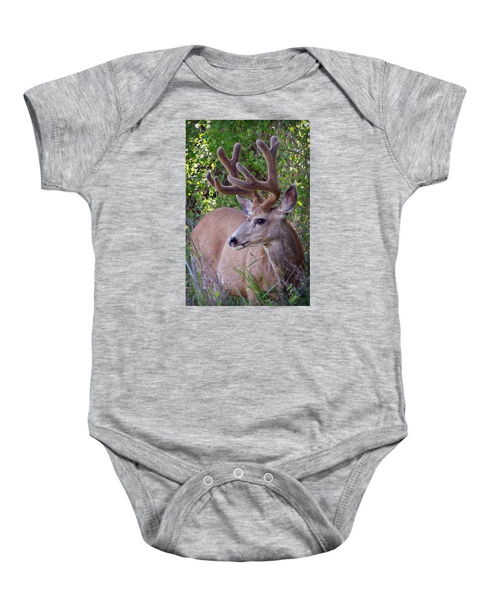Deer Baby Onesie featuring the photograph Buck In The Woods by Athena Mckinzie