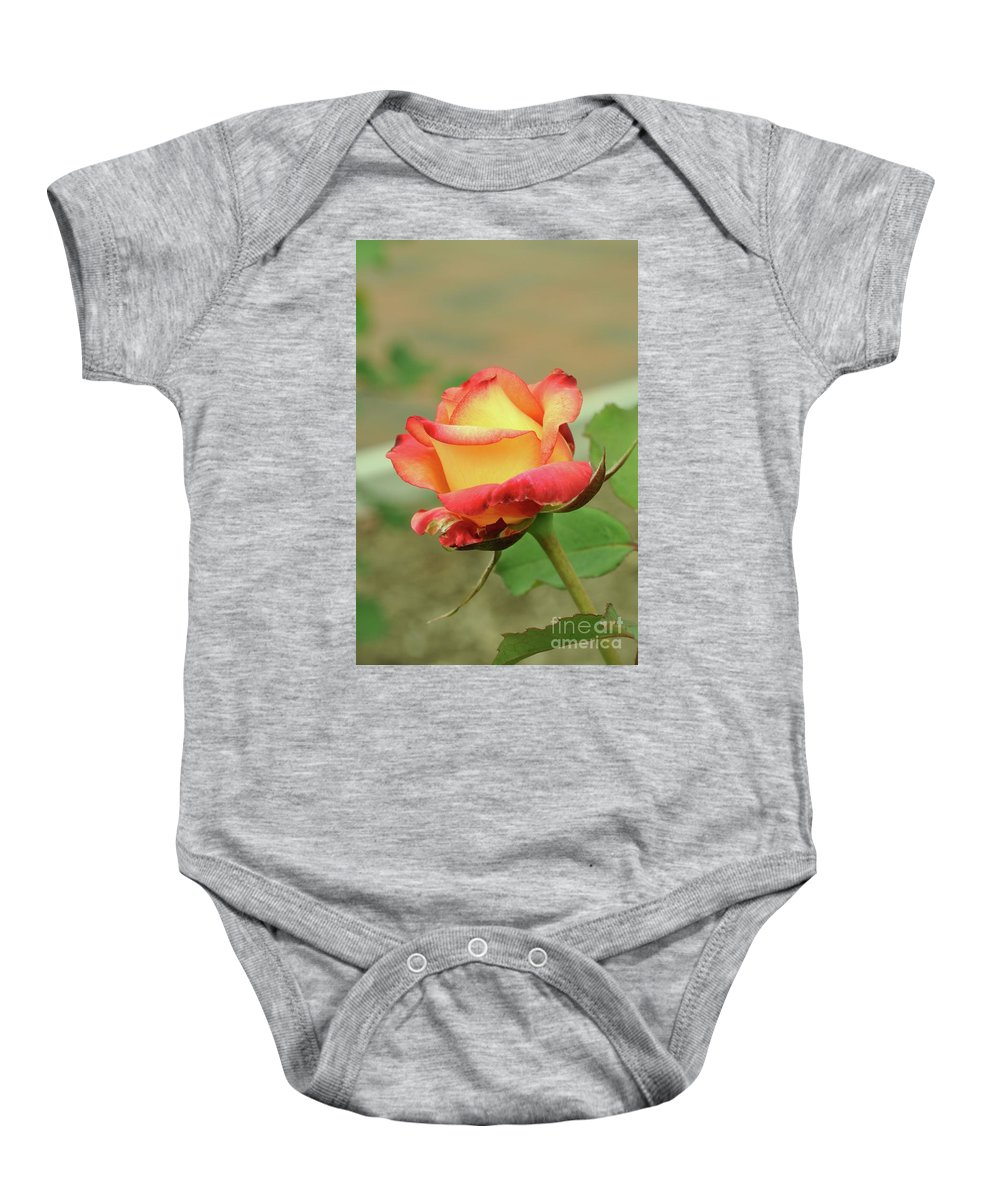 Delaney Sisters Hybrid Baby Onesie featuring the photograph Delaney Sisters Grandiflora Rose 2 by Allen Beatty