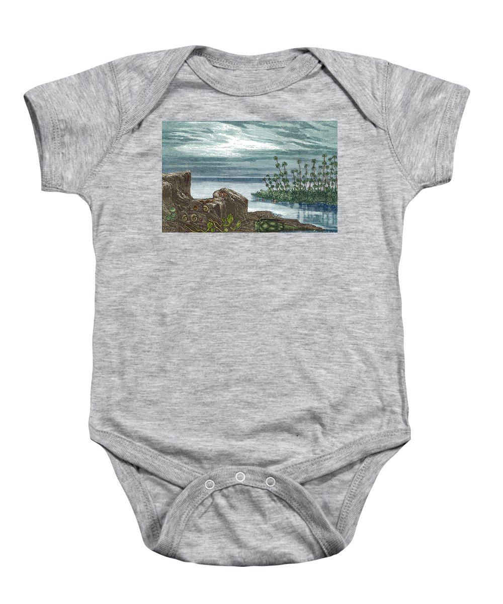 Devonian Period Baby Onesie featuring the photograph Devonian Period by Science Source