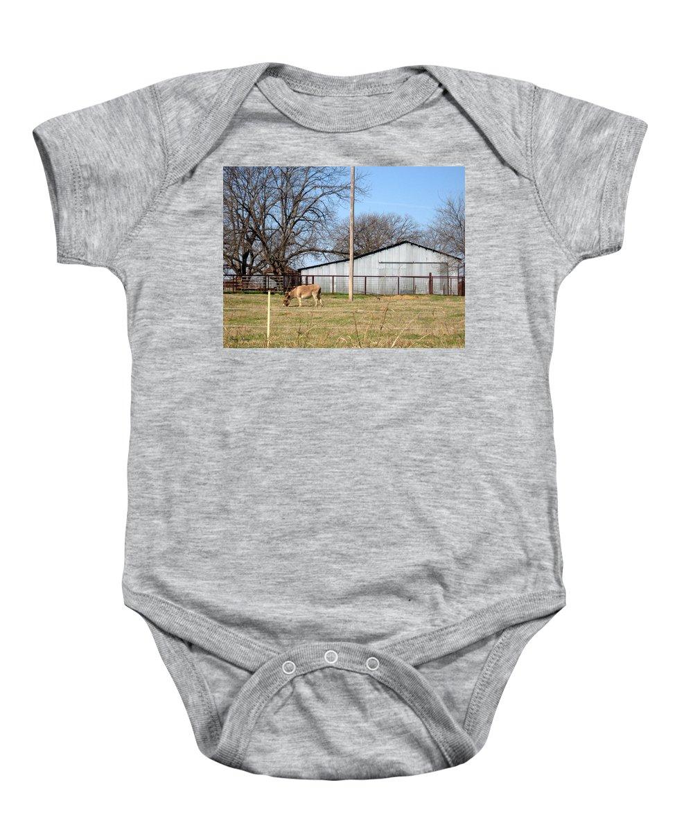 Donkey Baby Onesie featuring the photograph Donkey Lebanon In Oklahoma by Amy Hosp