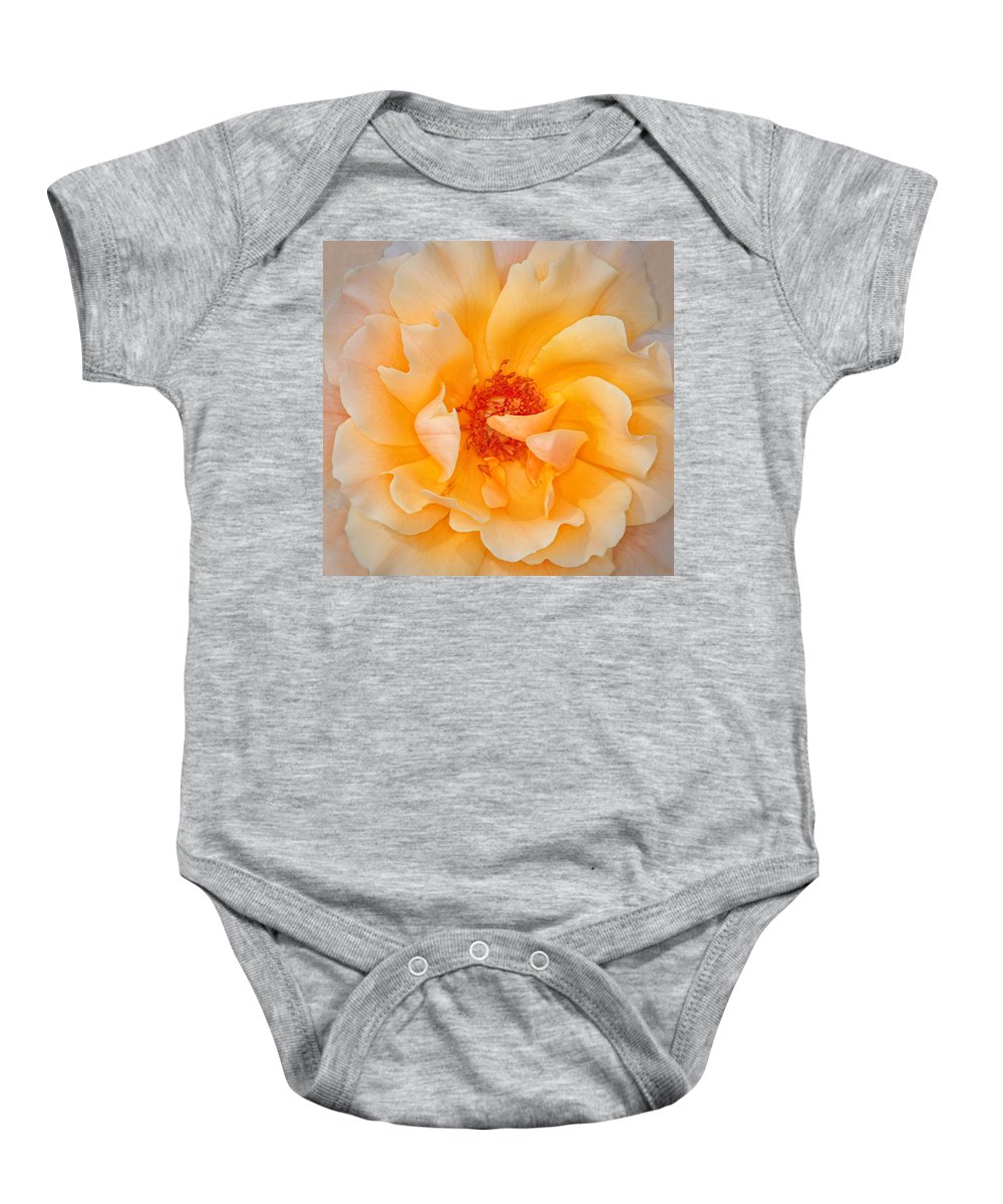 Rose Baby Onesie featuring the photograph Dreamy Orange Rose by Dave Mills