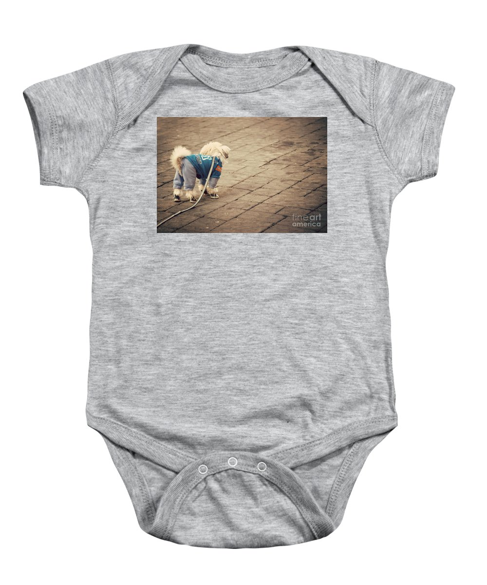 Adorable Baby Onesie featuring the photograph Dressed Up Dog by Juli Scalzi