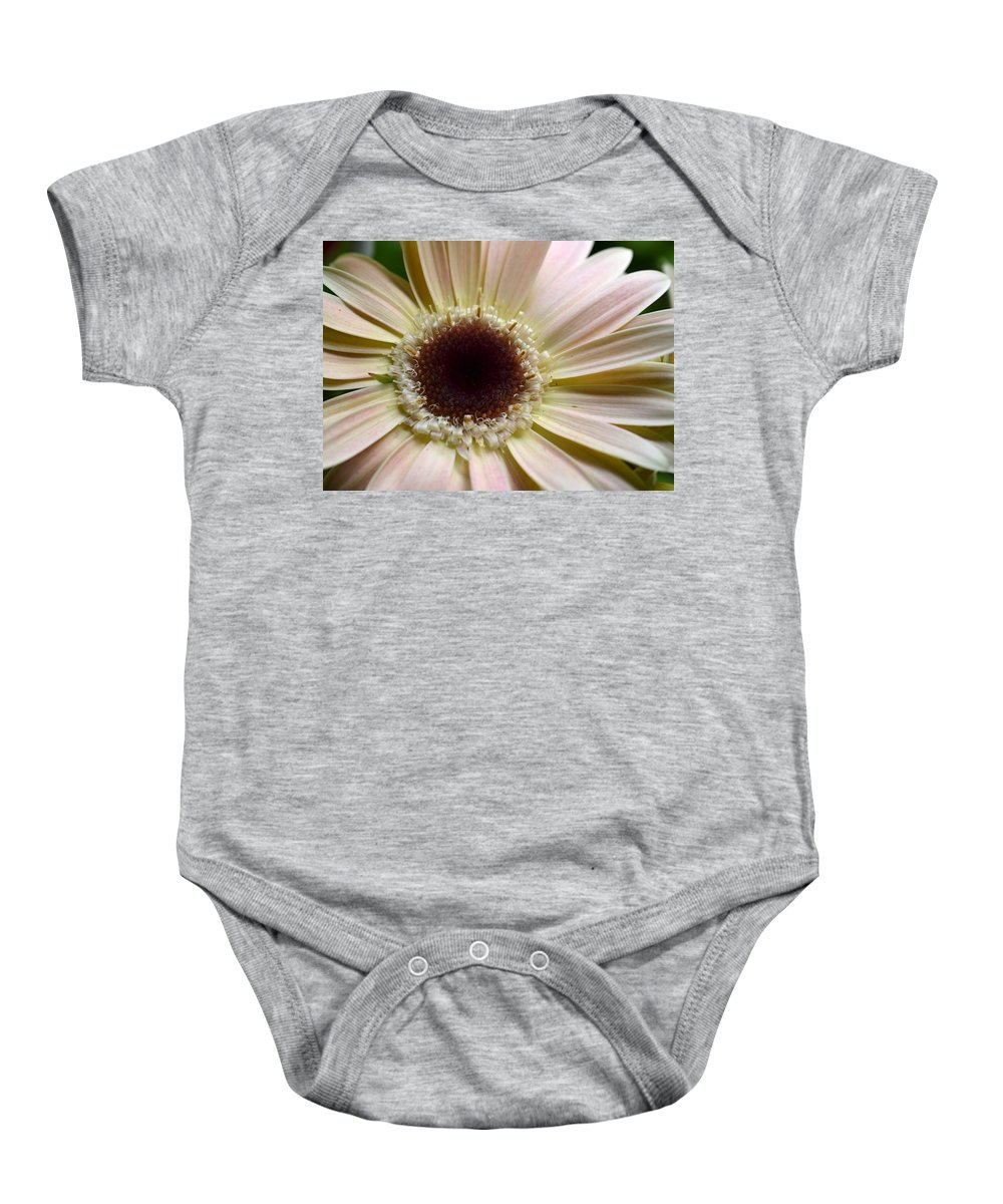Gerber Baby Onesie featuring the photograph Dsc271d-001 by Kimberlie Gerner